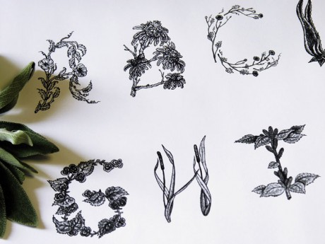 sasha prood, sash hearts paper, heart, paper, vegetables, plants flowers, typeface, typography, hand, rendered, hand, drawn, illustration, illustrated, black and white, colour, organic, experimental,