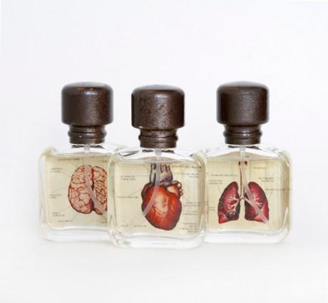 Van Der Lichaam, aromatherapy, holland, dutch, packaging, anatomy,