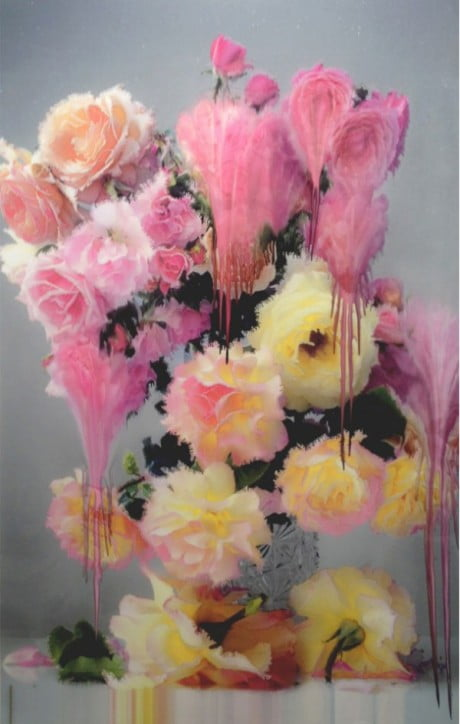 nick knight, flora, nick knight flora, nick knight flora exhibition, flora exhibition, showstudio, show studio, london, 2012 exhibition, show studio exhibition, show studio flora, show studio nick knight