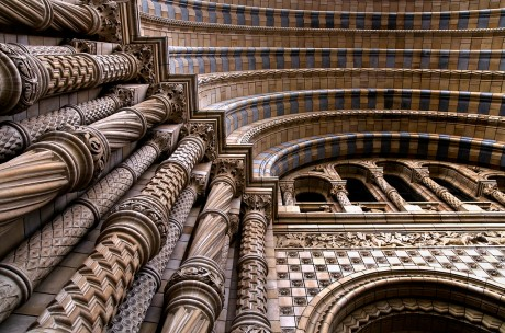 natural history museum, architecture, interior, architectural interior, architectural interior photography, photography, martin turner