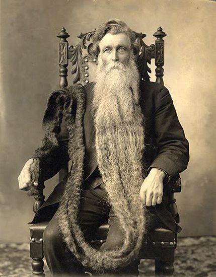 beard, long beard, bearded man, longest beard