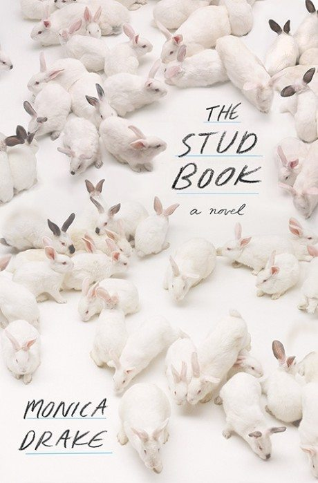 book design, cover design, the stud book, monica drake, megan mclaughlin