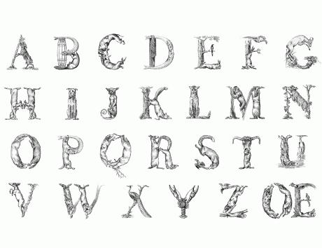 Joseph Balthazar Silvestre, animal alphabet, typeface, font, typography, illustration