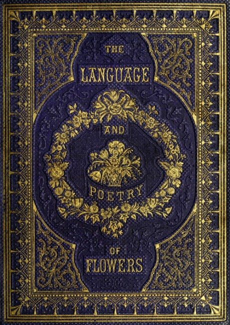 The Language of Flowers: An Alphabet of Floral Emblems, 1857, book, old book, illustration, meaning, collectible