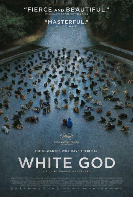 US poster, poster, movie poster, film poster, White God, director, Kornél Mundruczó, Hungary, 2014
