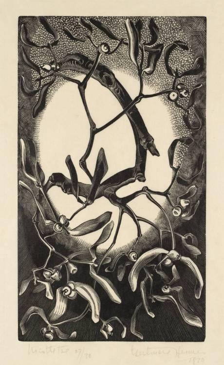 Waterlilies, 1930, Thorn apple, hallucinogen, Datura stramonium, Jimsonweed, nightshade, gertrude hermes, engraver, wood engraving, illustration, flowers