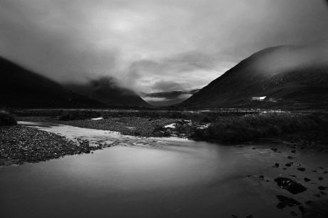 alladale, alladale wilderness reserve, scotland, highlands, Paul lister, red deer, stag, landscape, black & white