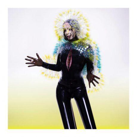 Bjork, Vulnicura, album, new album, photography, album cover, music