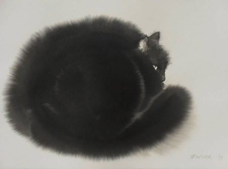 Endre Penovác, watercolour, cat, friday feline, ink, print, cat illustration