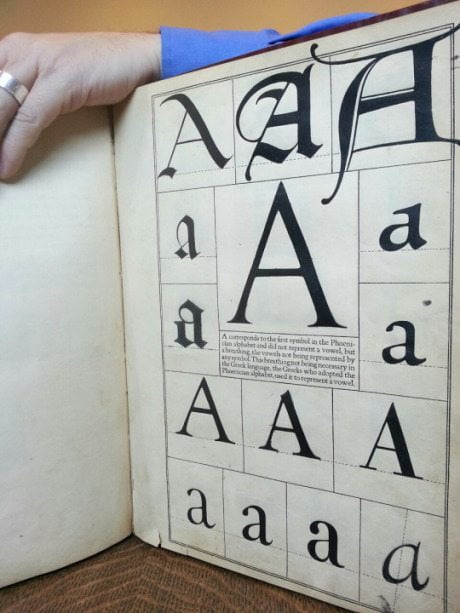 Goudy, typography, letter, letterform, font, fredericc goudy