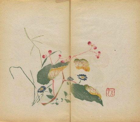Shi zhu zhai shu hua pu, oldest book, oldest multicolour book, calligraphy, painting, watercolour, chinese watercolour, birds, plums, orchid, bamboo, fruit, stones, butterfly binding, polychrome xylography, douban, Hu Zhengyan, 1500, 1600
